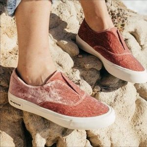 SeaVees Sunset Strip Sneaker in Heather Rose Crush